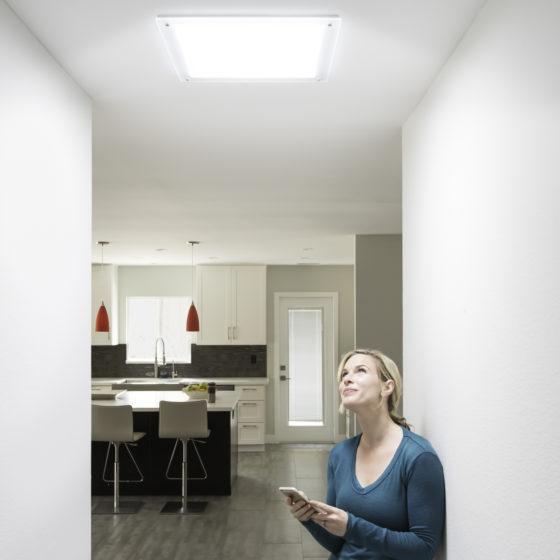 skylight diffuser